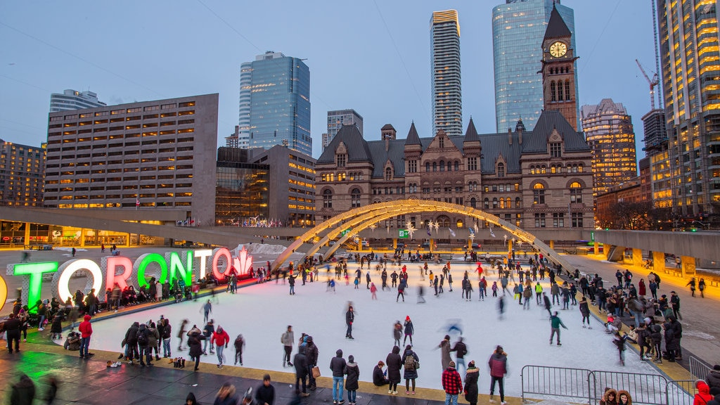 Nathan Phillips Square which includes snow skiing, night scenes and signage
