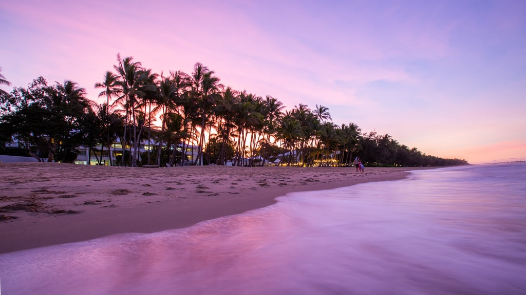 Palm Cove Beach ofreciendo vistas generales de la costa, una puesta de sol y escenas tropicales