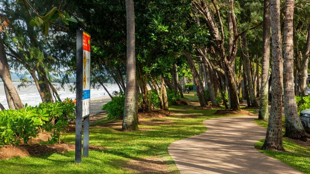 Palm Cove showing a park