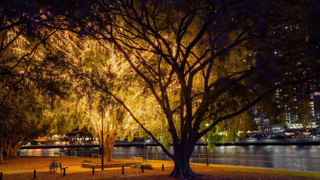 Kangaroo Point which includes a park, a river or creek and night scenes