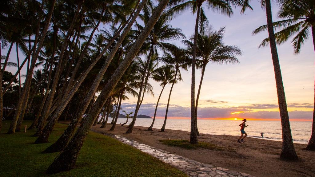 Tropical North Queensland ofreciendo escenas tropicales, vistas generales de la costa y una playa de arena