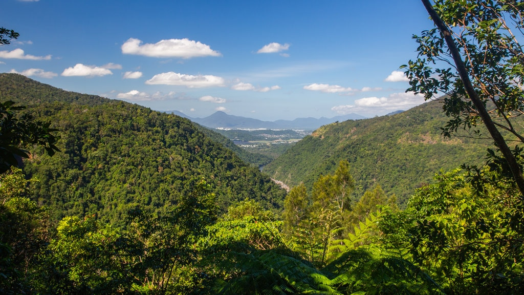 Kuranda showing landscape views and tranquil scenes