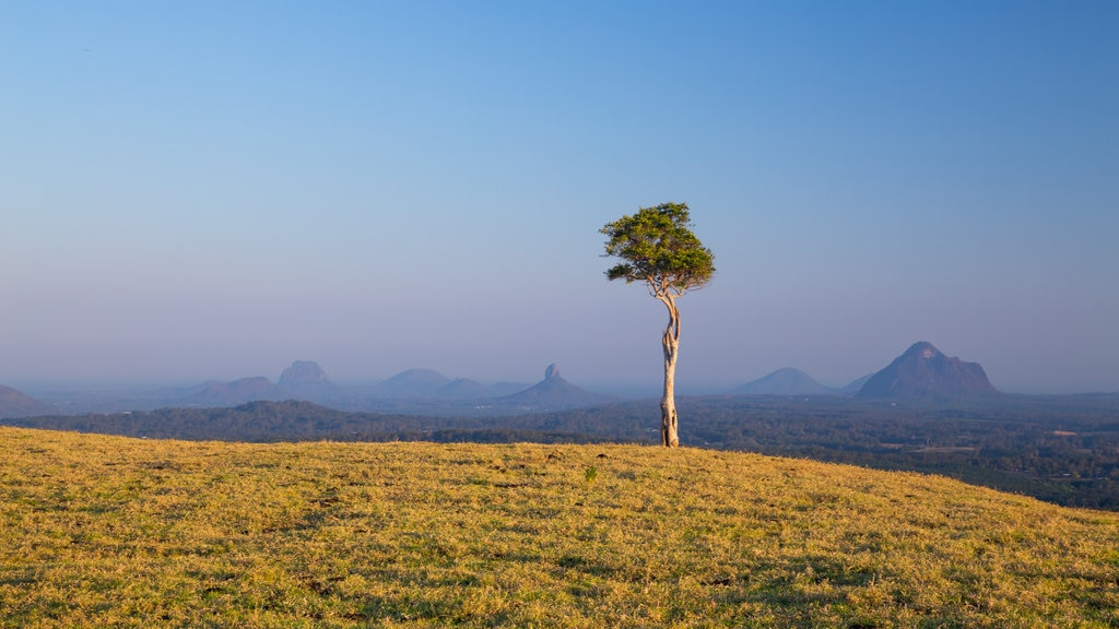 Maleny featuring tranquil scenes, landscape views and a sunset