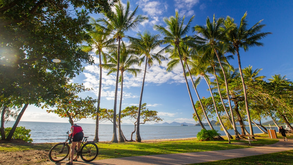 Palm Cove featuring a park, cycling and general coastal views