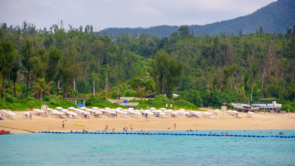 Nago which includes a beach and general coastal views