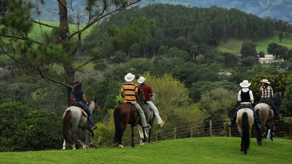 Jarabacoa which includes tranquil scenes and horseriding