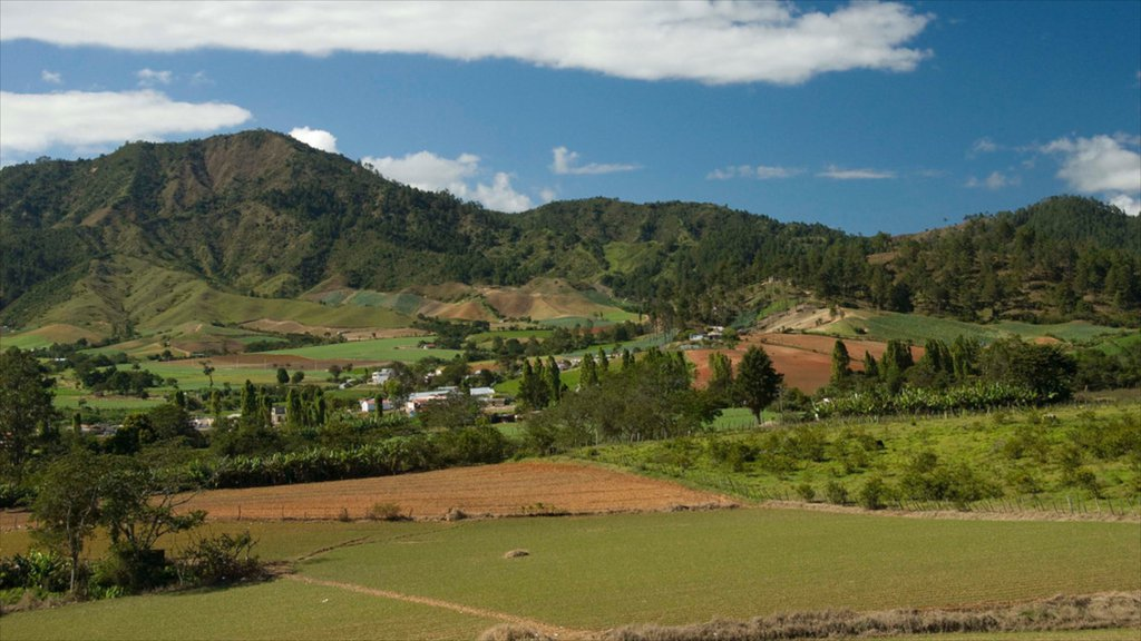 Jarabacoa showing tranquil scenes, farmland and mountains