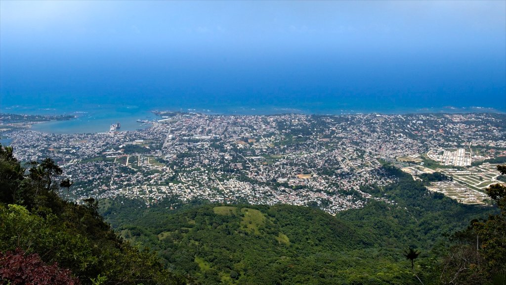 Dominican Republic which includes a coastal town, general coastal views and landscape views