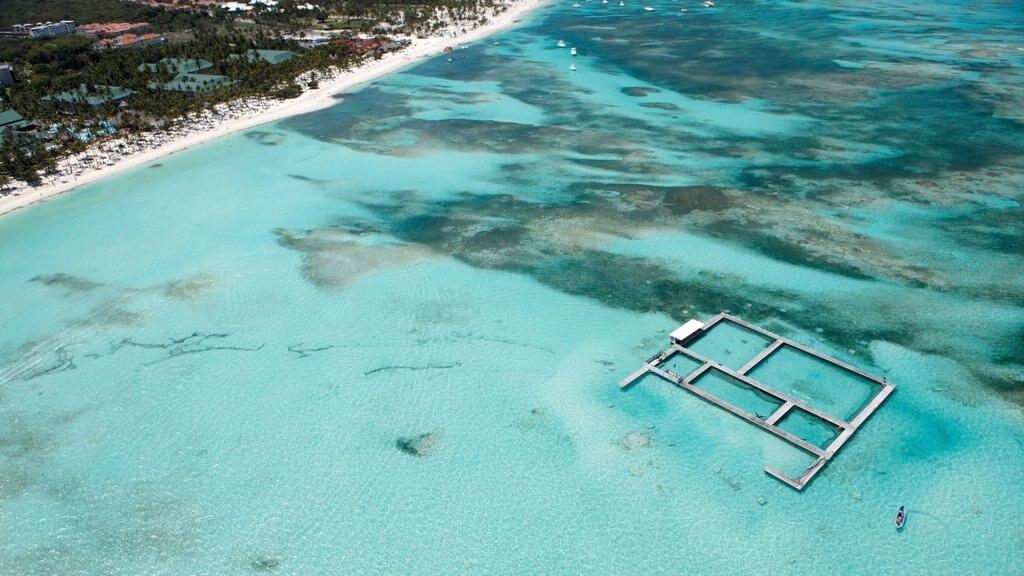 Dolphin Island som visar tropisk natur och en sandstrand