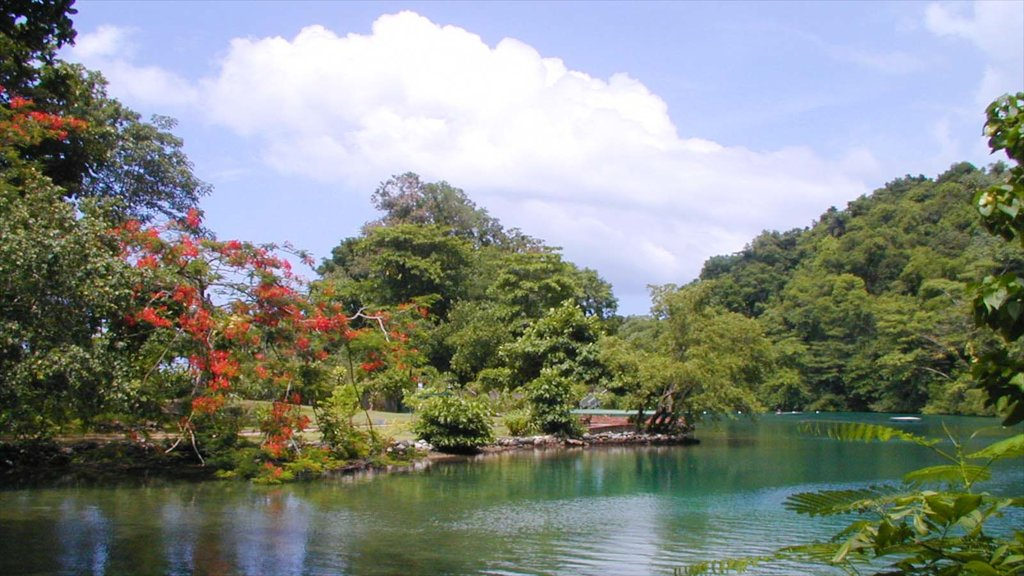 Landscape Pictures View Images Of Jamaica