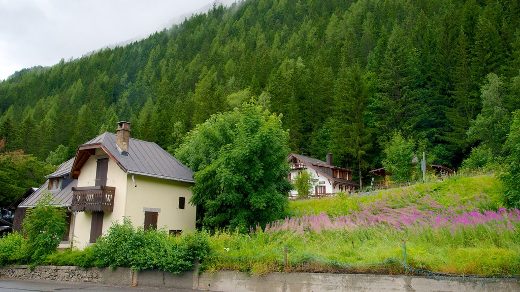 Argentiere which includes a small town or village, a house and forests
