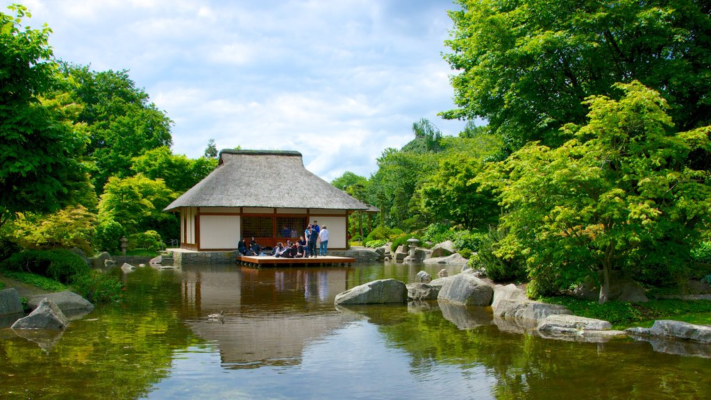 Japanese Garden showing a pond and a garden