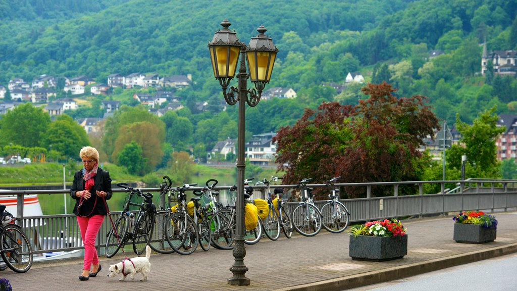 Cochem featuring a park and street scenes as well as an individual femail