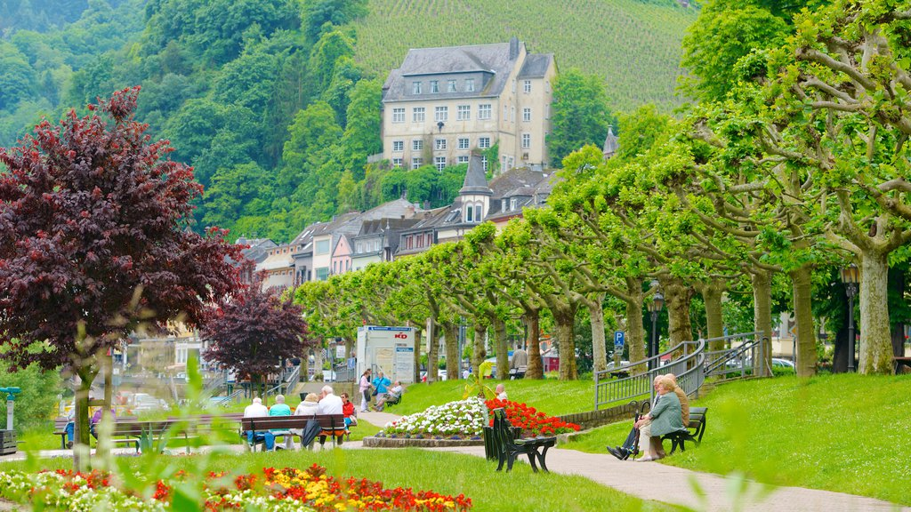 Cochem showing a garden, flowers and a small town or village