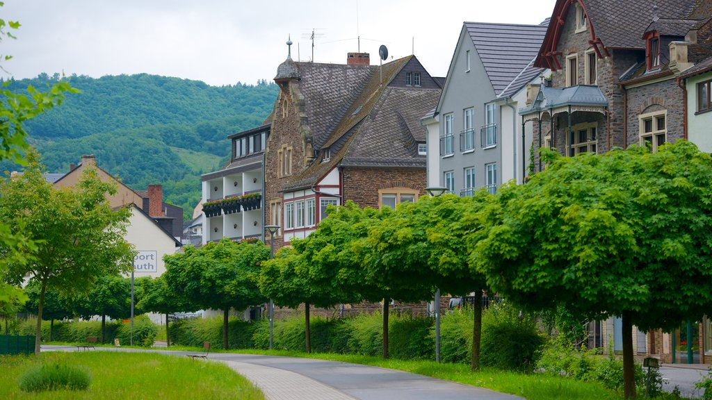 Cochem featuring a garden, a small town or village and street scenes