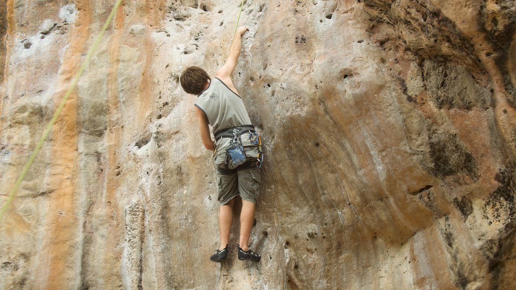 Krabi which includes climbing as well as an individual male