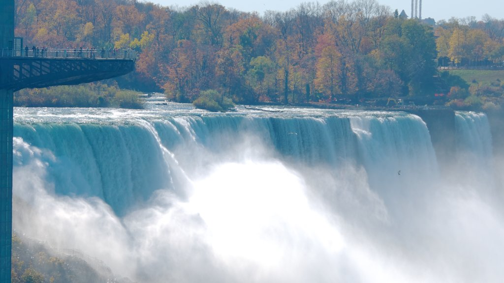 Bridal Veil Falls showing bungee jumping, autumn leaves and a waterfall