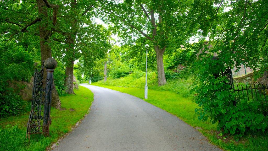 Skansen Kronan showing a park