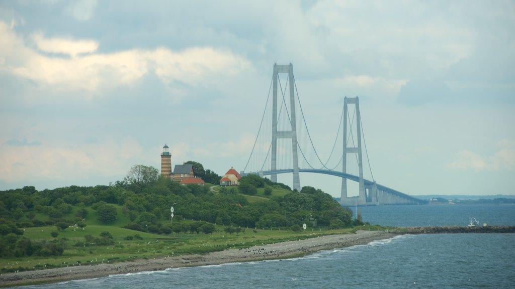 Puente de Oresund mostrando vistas generales de la costa y un puente colgante o pasarela en las copas de los árboles