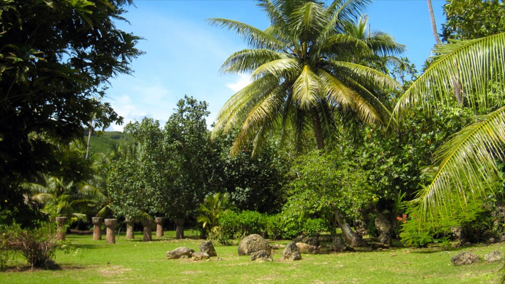 Latte Stone Park featuring a garden