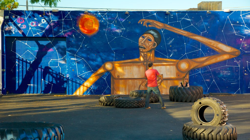 Wynwood Art District featuring outdoor art as well as an individual male