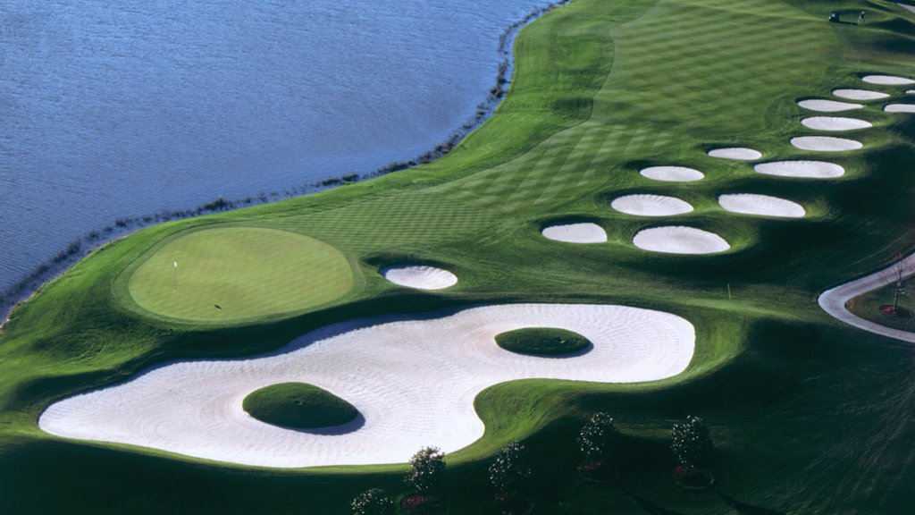 Falcon\'s Fire Golf Club which includes a lake or waterhole and golf
