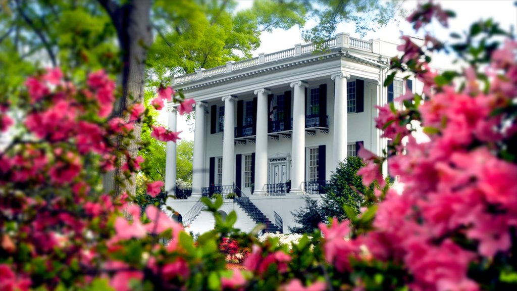 Tuscaloosa which includes heritage architecture, chateau or palace and flowers