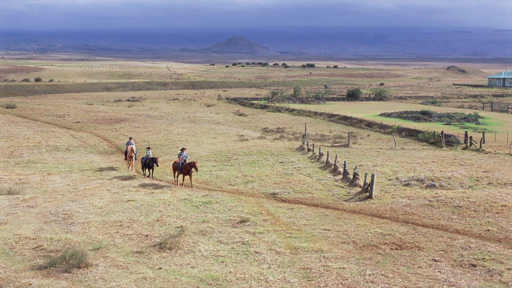 Parker Ranch Center showing horseriding, farmland and tranquil scenes