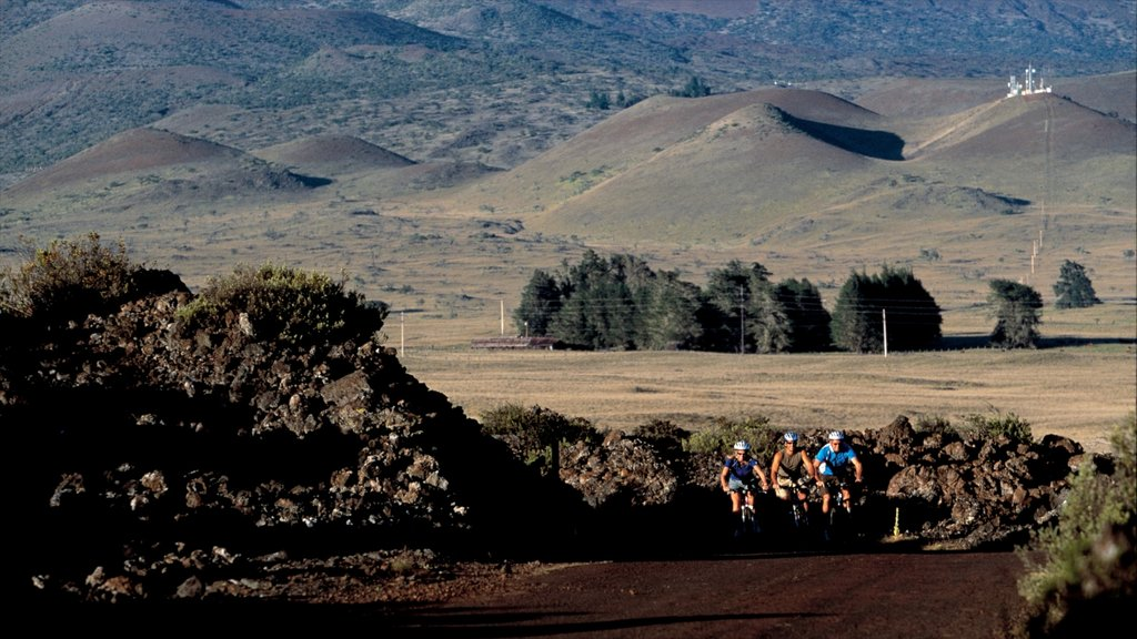 Hawaii showing mountain biking and tranquil scenes as well as a small group of people