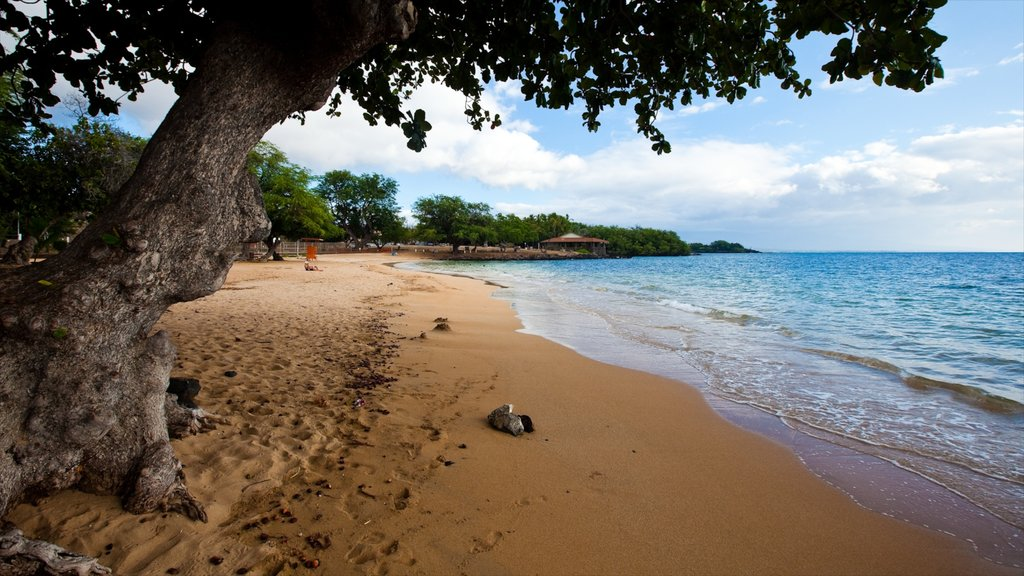 Kawaihae featuring a beach