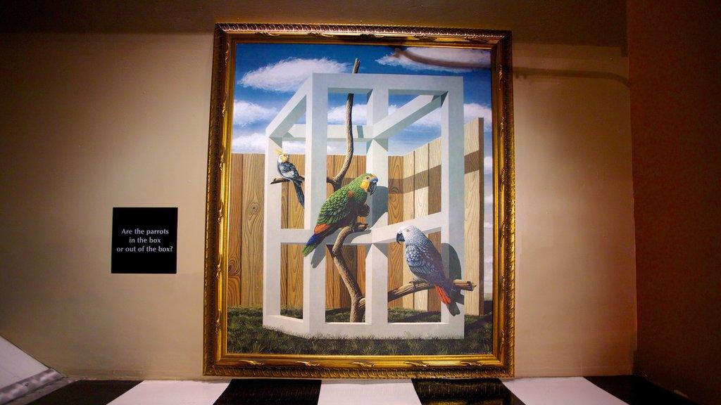 Wonderworks showing art and interior views