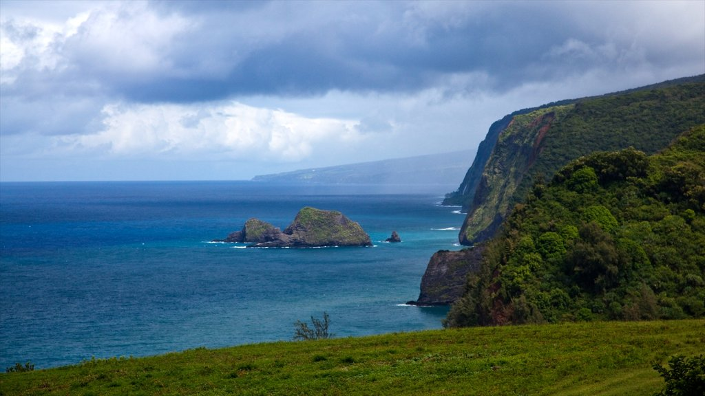 Kohala Coast - Waikoloa showing a gorge or canyon, landscape views and rocky coastline