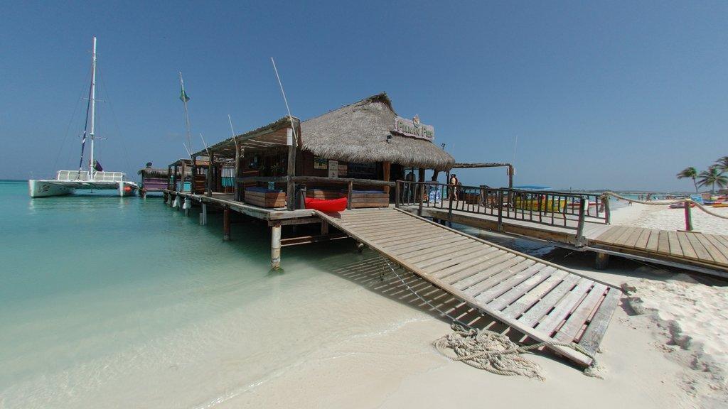 Aruba which includes a sandy beach, a marina and tropical scenes