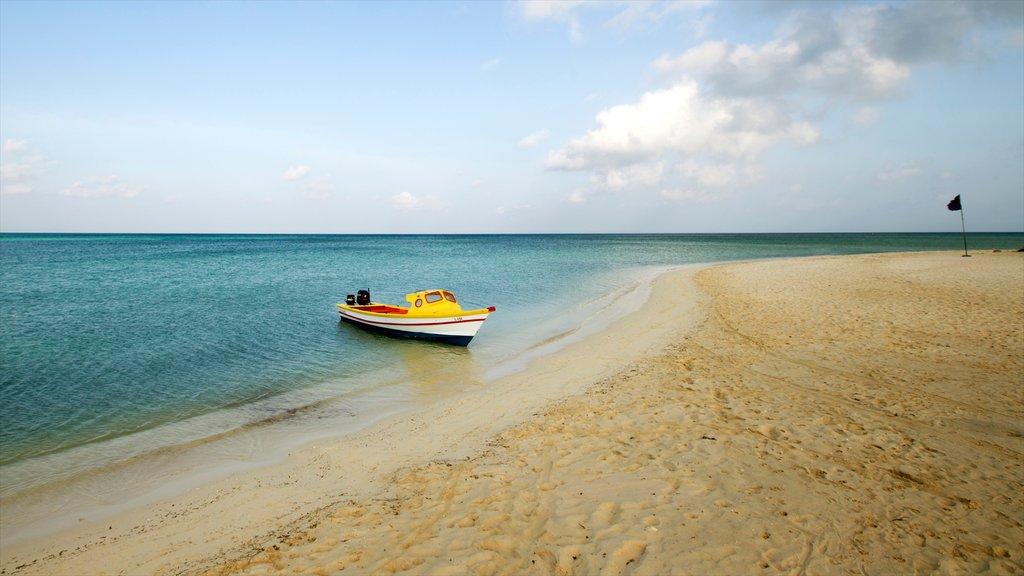 Aruba featuring landscape views and a sandy beach