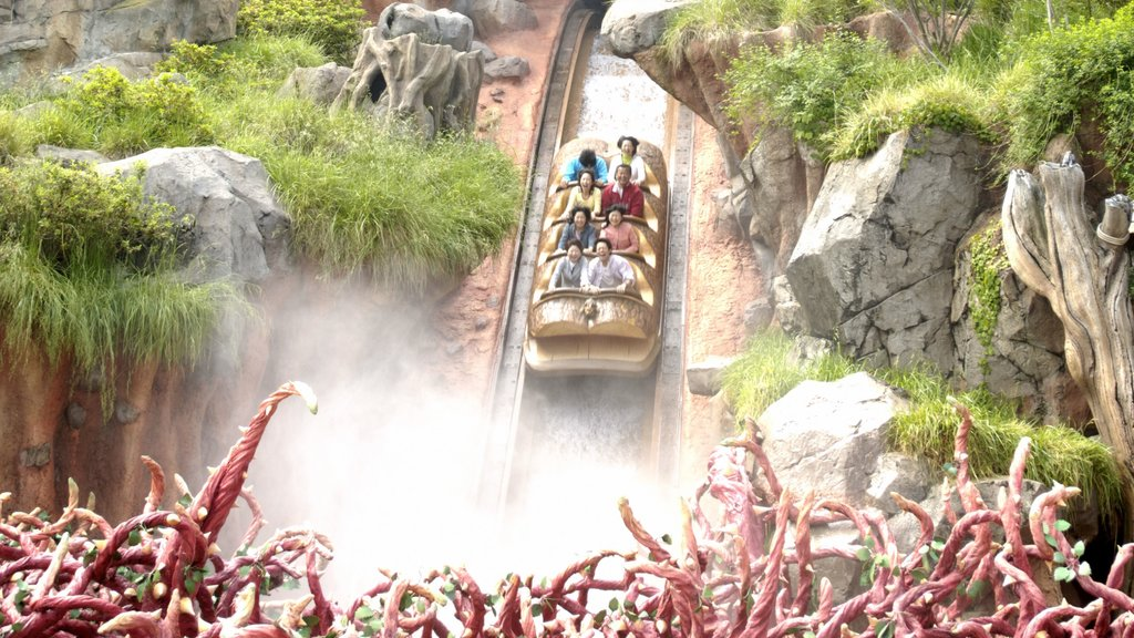 Disneyland® Tokyo featuring rides as well as a small group of people