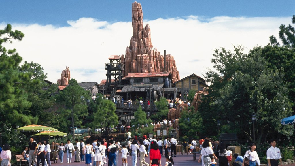 Disneyland® Tokyo showing rides as well as a large group of people