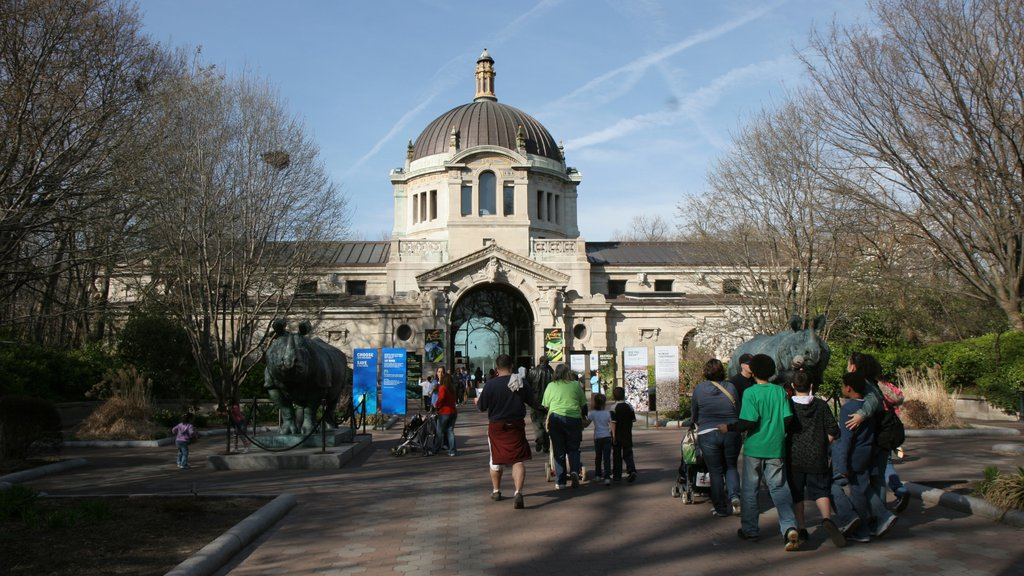 Bronx Zoo showing zoo animals