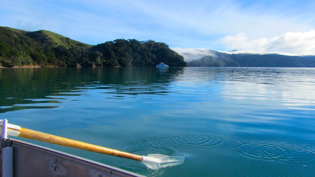 Waiheke Island which includes general coastal views, kayaking or canoeing and island images