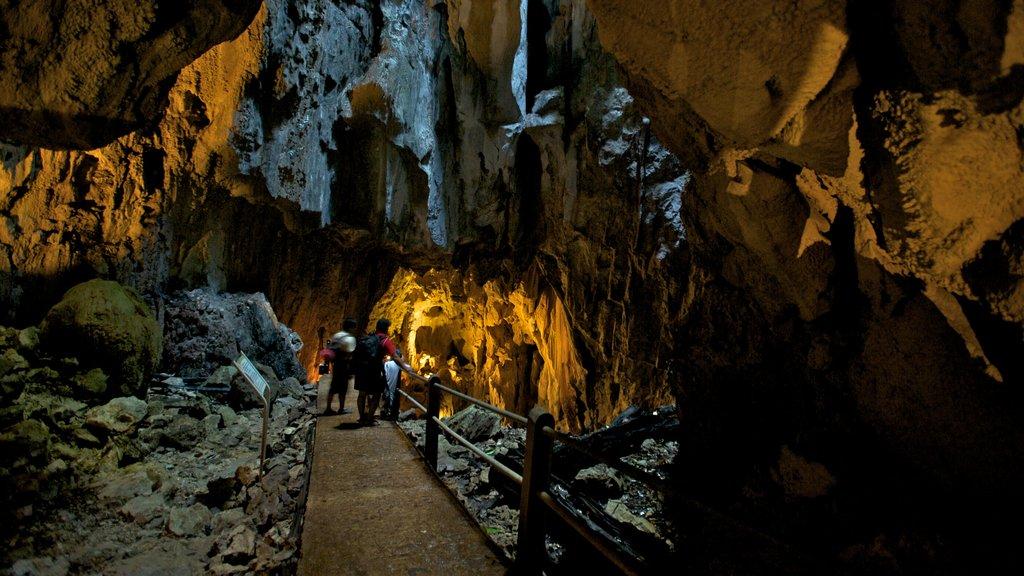 Gunung Mulu National Park featuring caves, caving and interior views