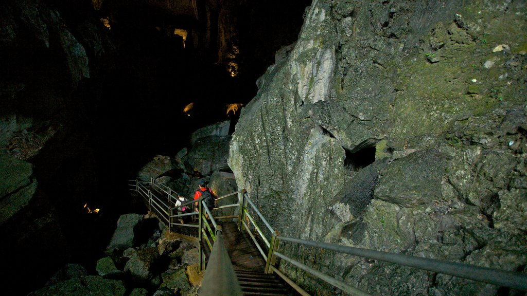 Gunung Mulu National Park which includes caving, interior views and caves