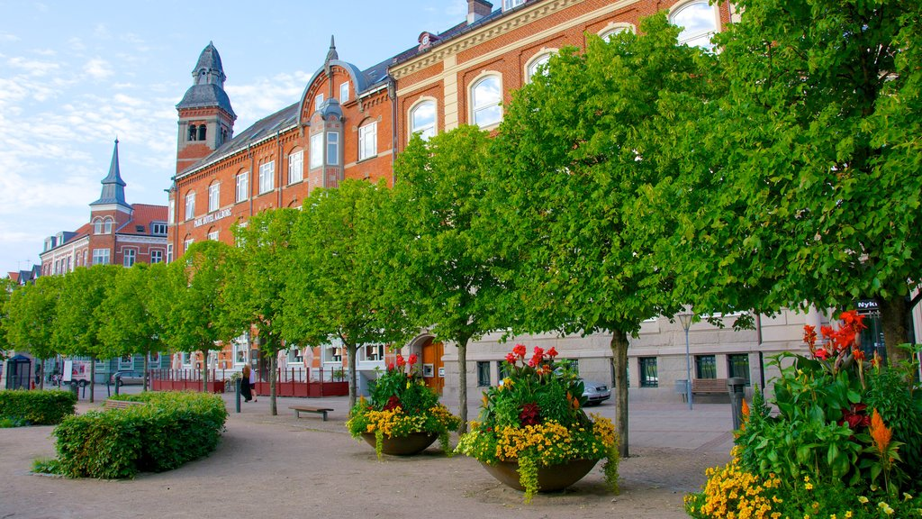 Aalborg featuring heritage architecture and flowers
