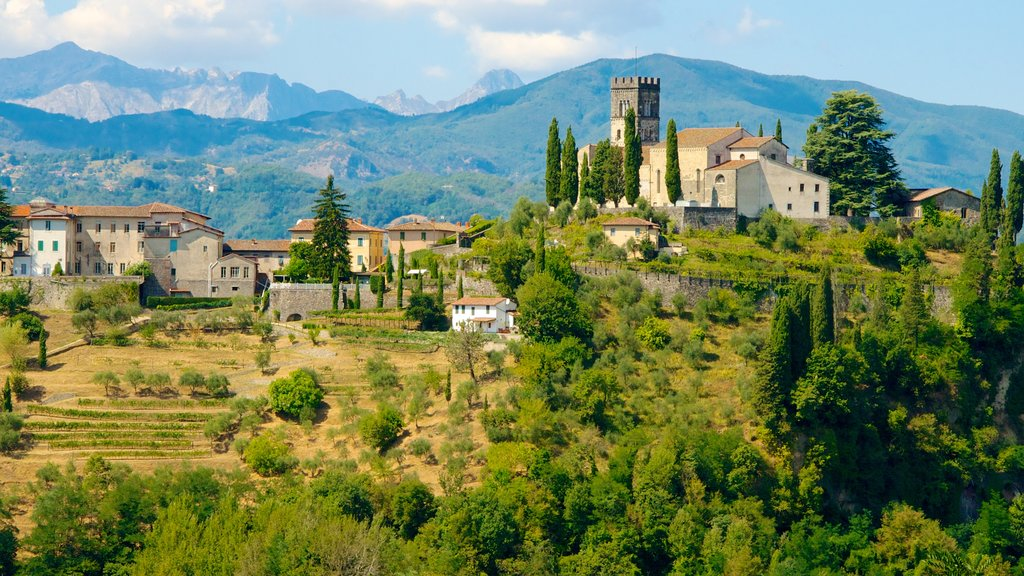 Barga which includes a small town or village, farmland and mountains