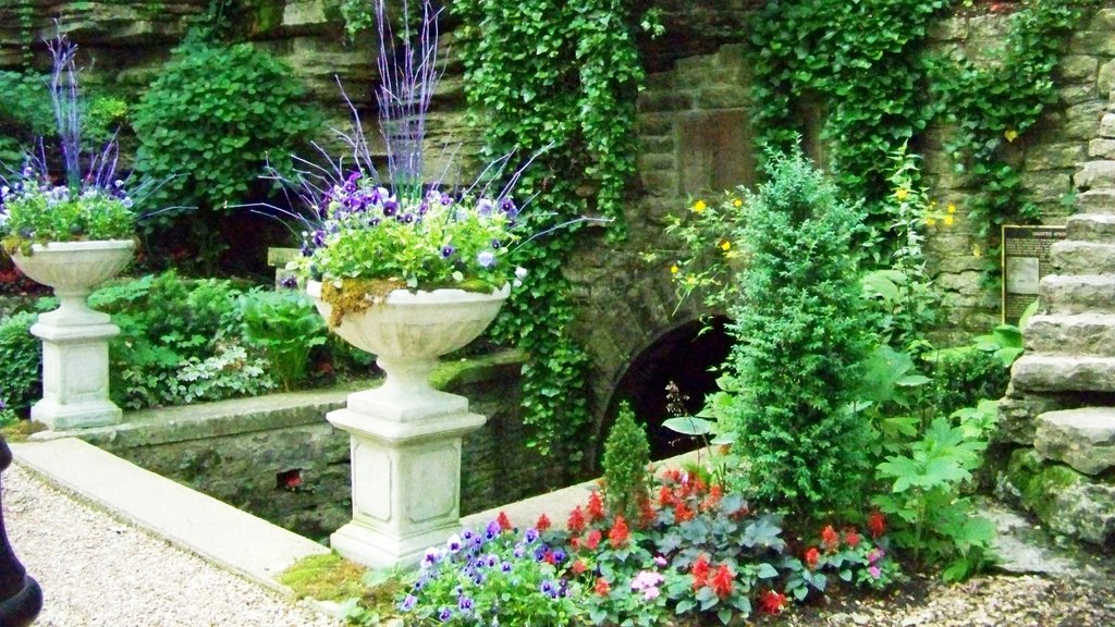 Eureka Springs featuring a garden and flowers