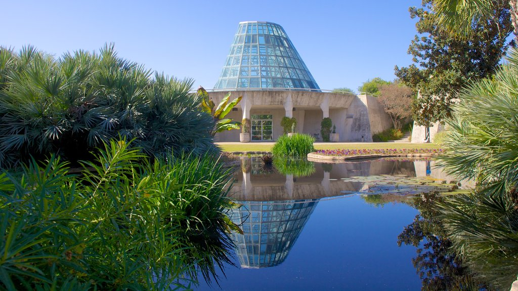 San Antonio Botanical Gardens which includes modern architecture, a garden and a pond