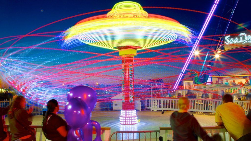 Galveston Island Historic Pleasure Pier which includes night scenes and rides
