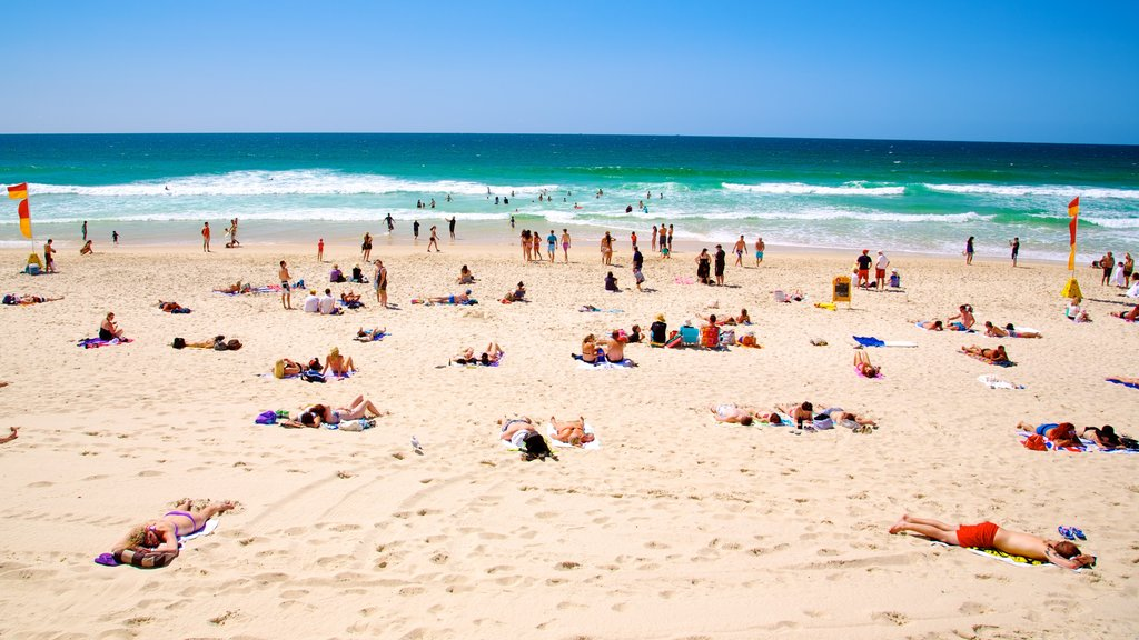 Surfers Paradise which includes a sandy beach and general coastal views as well as a large group of people