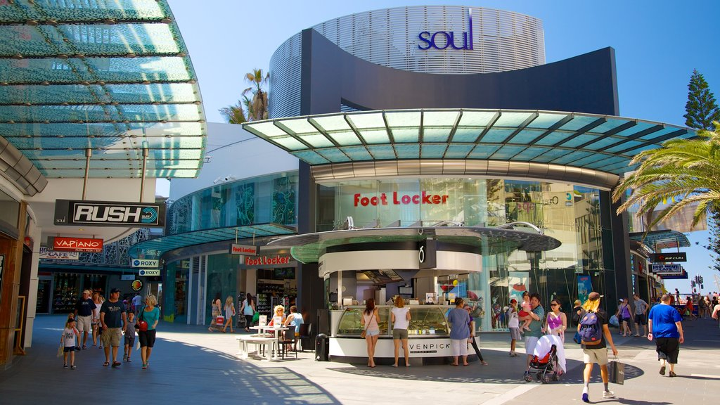 Surfers Paradise showing a city, signage and modern architecture