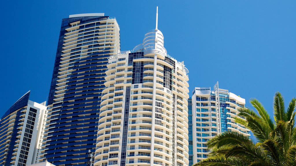Surfers Paradise which includes a city, a skyscraper and cbd