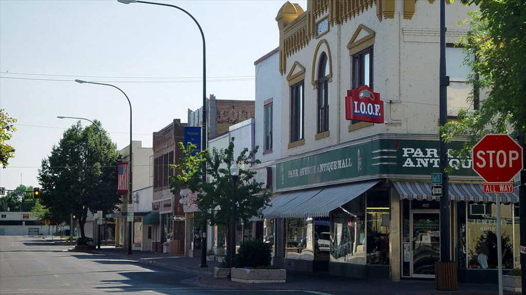 Idaho Falls showing a city and signage