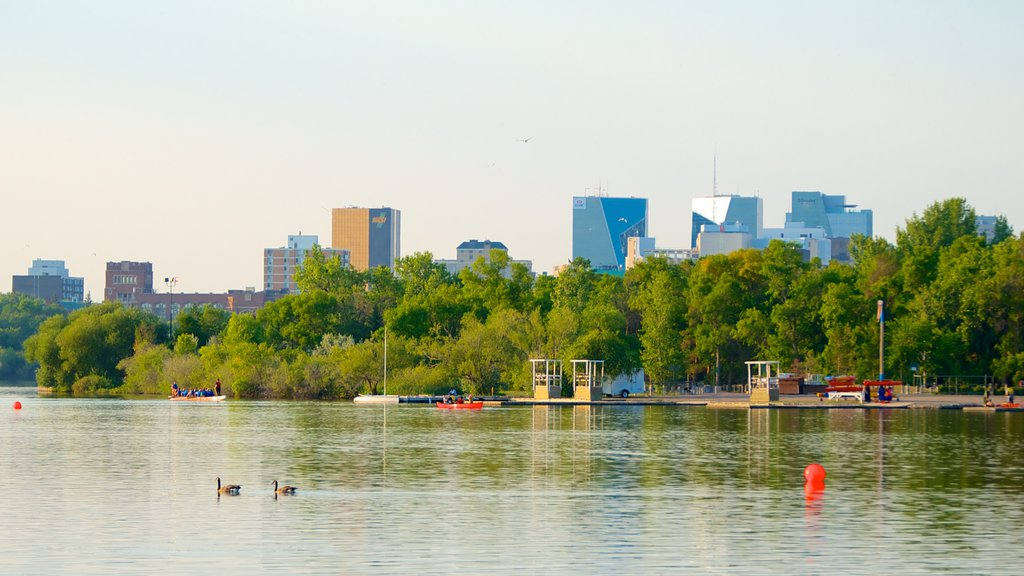 Wascana Park showing a city, a skyscraper and a garden